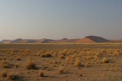De woestijn van de zonsopgang namib Stock Foto