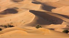 De woestijn van Doubai stock afbeeldingen