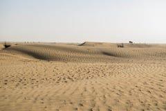 De woestijn van Doubai op een zonnige dag Stock Afbeelding