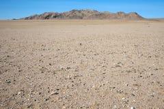 De Woestijn van Gobi Stock Foto's