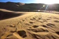 De Woestijn van Gobi Royalty-vrije Stock Foto