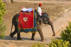 De woestijn van India, Rajasthan, Thar: Kleurrijke tulband Stock Afbeelding