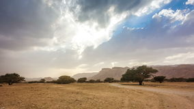 De woestijn van Judean stock footage