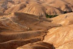 De woestijn van Judean stock foto