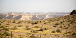 De woestijn van Judean Stock Fotografie