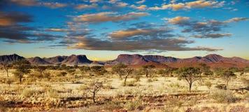 De Woestijn van Kalahari, Namibië Stock Afbeeldingen