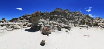 De woestijn van La Leona in Argentinië Stock Foto