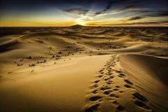 De Woestijn van Marokko Stock Afbeeldingen