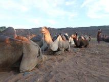 De woestijn van Marokko Royalty-vrije Stock Afbeeldingen