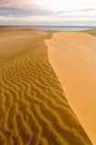 De woestijn van Maspalomas Stock Afbeeldingen