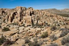 De Woestijn van Mojave, Californië Stock Afbeeldingen