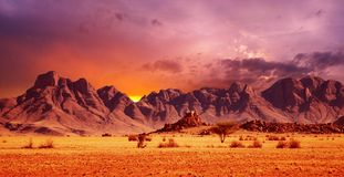 De Woestijn van Namib stock foto