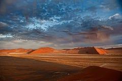 De Woestijn van Namibië, Afrika Stock Foto