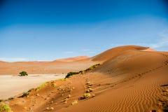 De Woestijn van Namibië, Afrika Stock Foto's