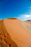 De Woestijn van Namibië, Afrika Stock Afbeeldingen