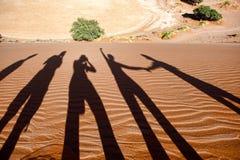De Woestijn van Namibië, Afrika Stock Fotografie