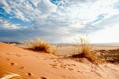 De Woestijn van Namibië, Afrika Royalty-vrije Stock Afbeelding