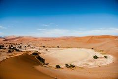 De Woestijn van Namibië, Sussusvlei, Afrika Royalty-vrije Stock Foto