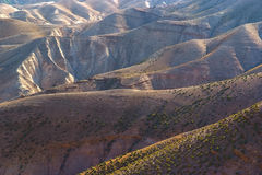 De Woestijn van Negev in Israël Stock Afbeelding