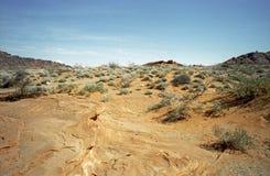 De Woestijn van Nevada Stock Foto's