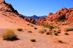 De woestijn van Nevada stock fotografie
