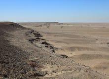 De woestijn van Qatari royalty-vrije stock foto's