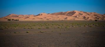 De woestijn van de Sahara in de zonsondergang royalty-vrije stock foto's