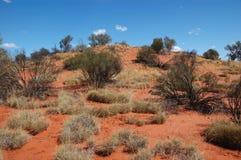 De woestijn van Simpson, Australië outb Stock Afbeeldingen