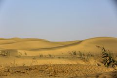 De Woestijn van Taklimakan stock afbeeldingen