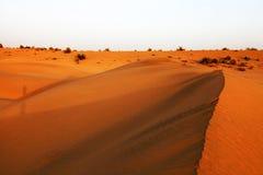 De Woestijn van Thar Stock Afbeelding