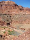 De woestijn van Utah stock afbeeldingen