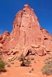 De Woestijn van Utah royalty-vrije stock foto