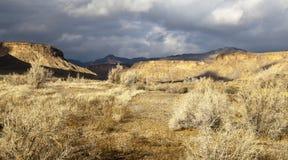 De Woestijn van Utah Royalty-vrije Stock Foto's