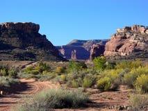 De Woestijn van Utah Stock Afbeelding