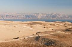 De woestijn van Yehuda en dode overzees Stock Afbeeldingen