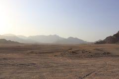 In de woestijn, Zuid-Sinai Gouvernement, Qesm Sharm Ash Sheikh, Egipt stock foto's