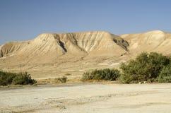 De woestijnbergen van Israël Royalty-vrije Stock Fotografie