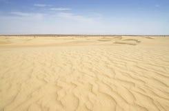 De woestijnduinen en rimpelingen van de Sahara Stock Foto's