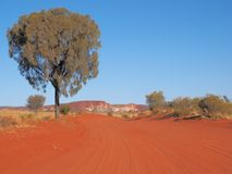 De woestijneik voerde rode zandige spoor en Regenboogvallei Stock Fotografie