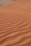 De Woestijnen van de V.A.E Royalty-vrije Stock Foto's