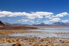 De woestijnlandschap van Bolivië, Eduardo Avaroa National Reserve van Andesfauna Stock Afbeeldingen