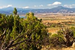 De woestijnlandschap van New Mexico Stock Afbeelding