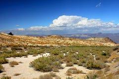 De Woestijnlandschap van Verenigde Staten Stock Foto