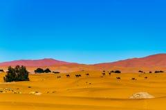 De woestijnzand van de Sahara Royalty-vrije Stock Fotografie