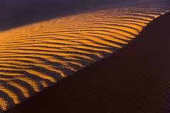 De woestijnzand van de Sahara Stock Afbeeldingen