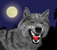 De wolf van de nacht royalty-vrije illustratie