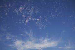 De wolk in de vorm van fantastische bloem Stock Afbeeldingen