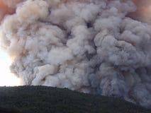 De wolk van de rook in bos Stock Foto