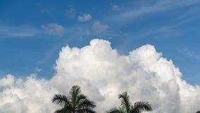 De wolk van Florida scape stock afbeelding