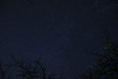 De wolken die in de maan overgaan steken aan door over een bos en op een hoogtepunt van de nachthemel van sterren royalty-vrije stock afbeelding
